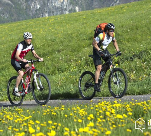 Bicicleta de montaña – BTT